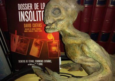 David Cuevas - Montaje con Sirenido - EDENEX -