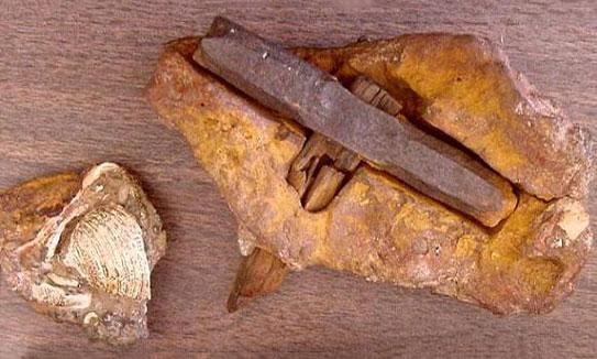 """Era 1934 - junio para ser exactos, en algún lugar cerca de Londres, Texas. Max Hahn estaba pescando con su familia. Encontró una roca con madera sobresaliendo de ella. La roca se abrió para revelar un martillo de hierro de forma octogonal de aproximadamente 6 """"x 1"""" (ahora se llama The London Hammer, obviamente está hecho por el hombre) con el mango de madera parcialmente carbonizado (convertido en carbón). Las pruebas en la cabeza mostraron una calidad de fundición difícil de producir en la actualidad. El martillo vino de un acantilado que los evolucionistas dicen que se formó hace unos 140 millones de años, cuando los dinosaurios estaban en la tierra ... Lo cual plantea un problema para los evolucionistas que dicen que el hombre llegó 65 millones de años después de los dinosaurios."""