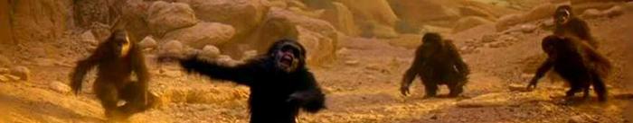 """Las primeras secuencias de '2001: Una odisea del espacio' de Stanley Kubrick se ubican en un tiempo prehistórico, mucho antes del desarrollo de la humanidad. Esta primera etapa denominada """"El Amanecer del Hombre"""" se inicia con un grupo de primates, suerte de protohumanos, que se encuentran en la lucha por la supervivencia, enfrentándose entre clanes por los recursos naturales del planeta. De pronto, como surgido de la nada, aparece un monolito. Uno de los grupos de primates se aproxima hasta el monolito y uno de ellos lo toca, desarrollando inteligencia misteriosamente. Esta estructura de forma rectilínea, aparece acompañada por unos sonidos perturbadores, difícilmente identificables, pero que en términos generales suscitan estados emocionales de zozobra e incomodidad en el espectador."""
